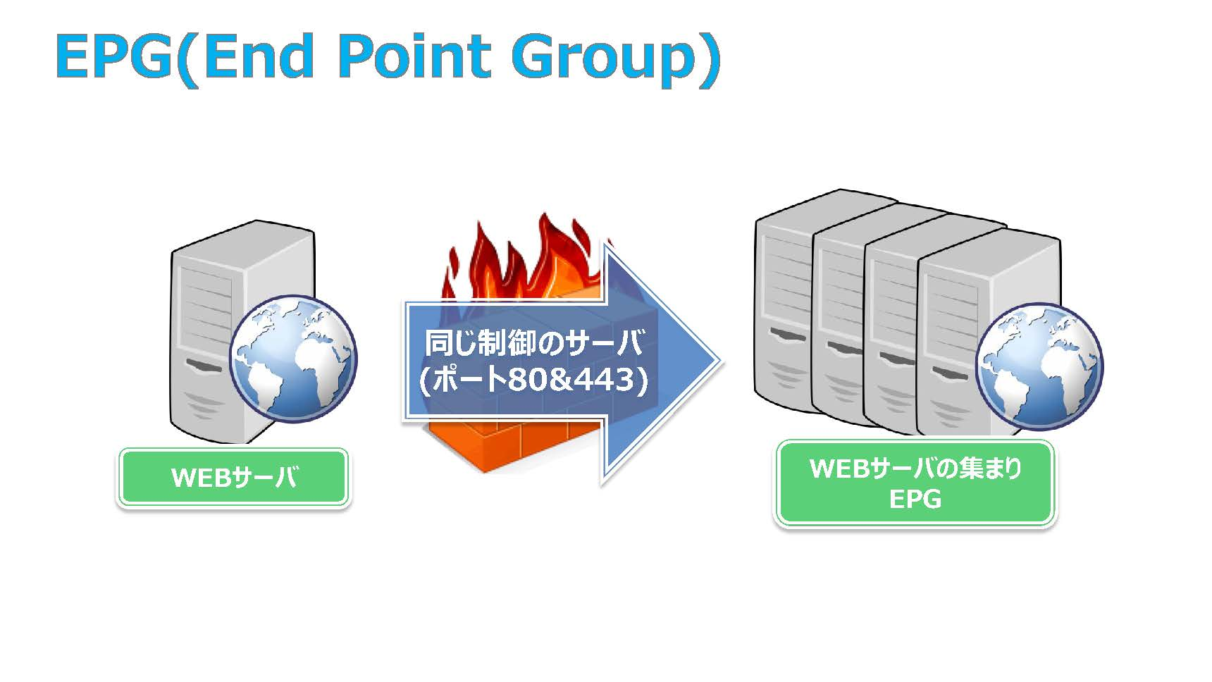 EPG(End Point Group)